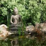 budismo-y-derechos-humanos